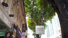 singapore / 2016