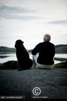 Sedící muž a pes hledí do krajiny Senior man with dog relaxing near lake Man And Dog, Dog Lovers, Relax, Celebrity, Couple Photos, Couples, Dogs, Fun, Couple Shots