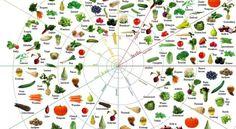 groente en fruit kalender