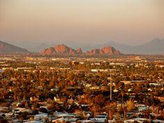 Overview of Phoenix.