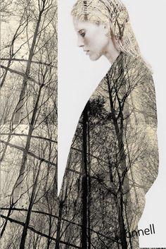 Earth Song, Tree Of Life, Collagen, Kit, Songs, Nature, Artwork, Naturaleza, Work Of Art