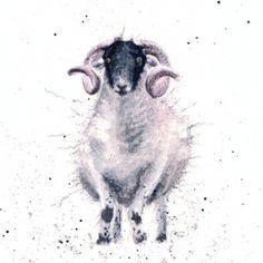Sheepish Torchon