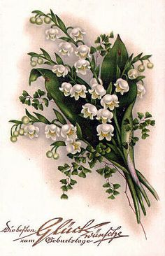 Vintage Lily-of-the-valley ~ maijpuķītes