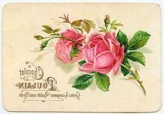Pintura Decorativa: IMAGENES PARA TRANSFERENCIAS SOBRE MADERA Y TELA