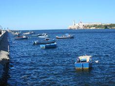 Havana Havana, Boat, Hearts, Dinghy, Boats