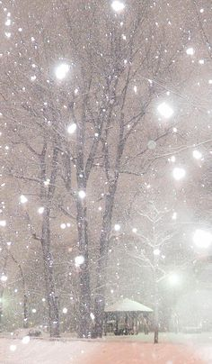 On a day without wind, snow falls very quietly by Yutaka Konya