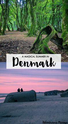 Some of the most magical places in Denmark to spend the summer, including the magical Troll forest and the raging North Sea.