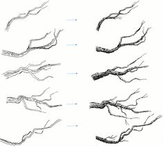 Learn to draw tree branches and twigs with this easy Pen and ink drawing tutorial. Fully illustrated step by step instructions and practice template provided. Tree Drawings Pencil, Realistic Drawings, Pencil Art Drawings, Easy Drawings, Flower Drawings, 3d Drawing Tutorial, Flower Drawing Tutorials, Drawing Ideas, 3d Drawing Techniques