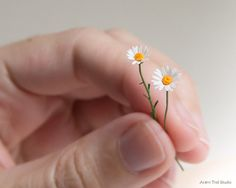 Items similar to Single Dollhouse Daisy. Ultra realistic miniature flowers, OOAK miniature art by Rumi Lazzi Barbie Accessories, Dollhouse Accessories, Miniature Plants, Miniature Dolls, Tiny Flowers, Paper Flowers, Biscuit, Mini Plants, Mini Things
