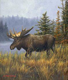 """Moose Country"" by Jim Hautman - Mammals Wildlife Paintings, Wildlife Art, Animal Paintings, Moose Pictures, Pictures To Paint, Moose Deer, Moose Art, Wild Life, Animal Painter"
