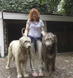 Gwen with wolfhounds, at Bunratty Folk Park