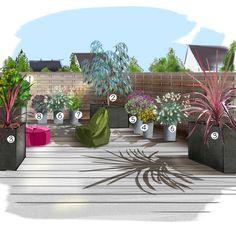 Projet aménagement jardin : Jardin Terrasse