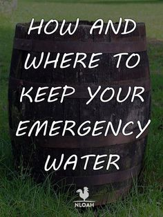 Survival Tips And Techniques For survival food Survival Life Hacks, Survival Food, Homestead Survival, Camping Survival, Outdoor Survival, Survival Prepping, Emergency Preparedness, Survival Skills, Survival Quotes