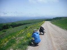 Mountain road  (Umbria, Italy)