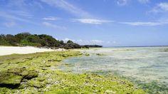 Gala Beach in Okinawa JP