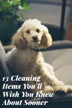 13 Cleaning Items You'll Wish You Knew About Sooner | Want your home to be sparkling clean? There's no need to spend an entire weekend scrubbing and dusting when nifty products can cut your cleaning time.