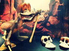 #Museum #Natur #Neandertal #Neanderthal-Museum #Reisen #Travel #Familie #Familienausflug #Tiere #Wald #Ferienwohnung #Duckomenta
