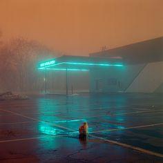 Neon foggy night