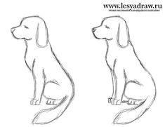 Как просто и легко нарисовать собаку