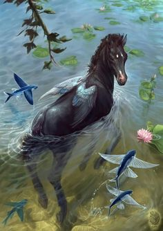 Equuleus by Lynx-Catgirl on DeviantArt Mythical Creatures Art, Mythological Creatures, Magical Creatures, Horse Drawings, Animal Drawings, Fantasy Anime, Fantasy Beasts, Equine Art, Horse Art