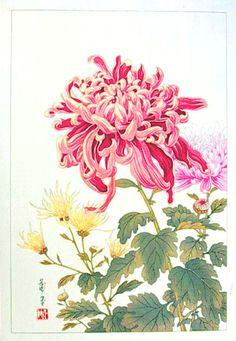 Chrysanthemum - No date - Hodo Takemura