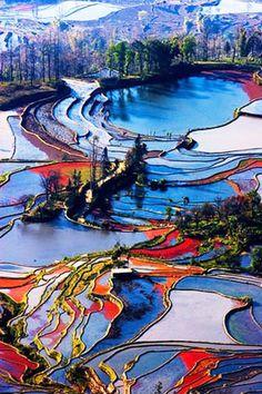 Yuanyang Terrace Field, China