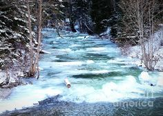 Ice Blue River by Carol Groenen #winter #christmascards #snow #pnw