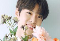 idol as your. Taeyong, Jaehyun, Nct 127, Nct Doyoung, Jeno Nct, Fandoms, Wattpad, Winwin, Nct Dream