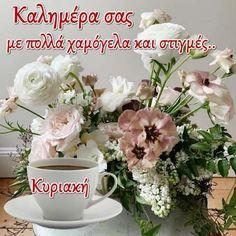 Good Night, Good Morning, Table Decorations, Plants, Funny, Nighty Night, Buen Dia, Bonjour, Funny Parenting
