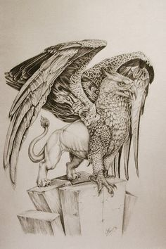 gryphon tattoos - Google Search More
