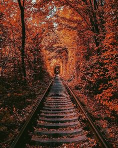 For your viewing pleasure! : Pictures - Color and black and white photographs for the pleasure of discovering nature and the world … - Autumn Photography, Landscape Photography, Autumn Aesthetic Photography, Halloween Photography, Road Photography, Beautiful Places, Beautiful Pictures, Wonderful Places, Autumn Cozy