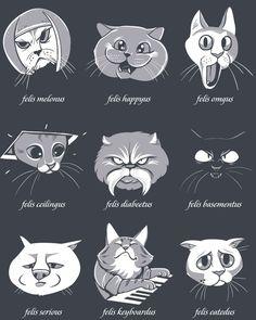 LOLcat Taxonomy by Kari Fry.