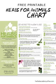 Natural remedies and tips for using Herbs for Animals - free chart