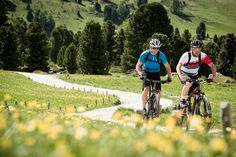 Symbolic of both escapism and nature in the wild, mountain biking is the perfect sport to discover a stunning alpine region.  Leysin Tourisme  Add: Route de la Cité 27 1854 Leysin - CH Tel : +41 (0) 24 493 33 00 Email: info@leysin.ch