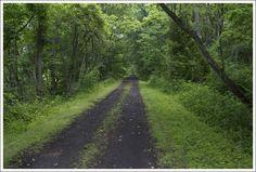 New River Bike Trail-Foster Falls, VA