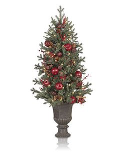 Heritage Spice Potted Tree  #mybalsamhillhome