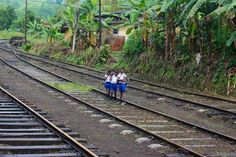 Kids on the tracks in Sri Lanka's hill country