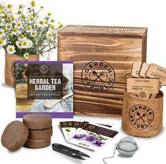 Indoor Culinary Herb Garden Starter Kit - Organic, Non-GMO, Heirloom Variety Seeds