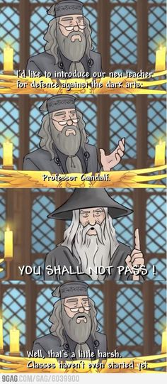 I wish they could've convinced Ian McKellen to play Dumbledore after RIchard Harris died. Michael Gambon was the worst.