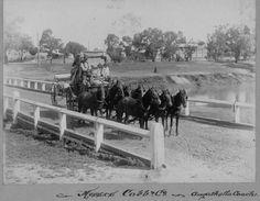 1902 Cobb & Co Coach