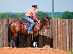 Downunder Horsemanship | Training Tip of the Week: Sweeten up your arena sour horse