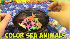 Learn color with Sea Animals | Colored Sea Animals for toddlers, baby, k...