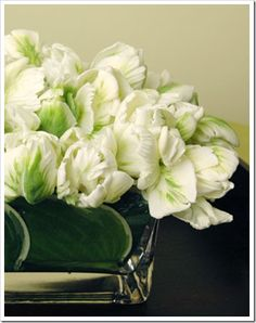 white tulips in vase, source unknown