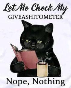 Cat Quotes, Funny Quotes, Funny Memes, Jokes, Cute Cats, Funny Cats, Funny Animals, Crazy Cat Lady, Crazy Cats