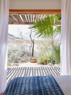 THE AWNING                               joshua tree casita airbnb desert view, kate sears photo