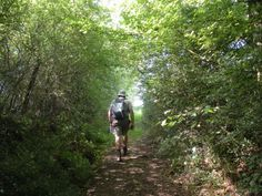 Les plaines 2011   Venez découvrir les forêts de l'Oise !   © Oise Tourisme Oise, Bradley Mountain, Tourism