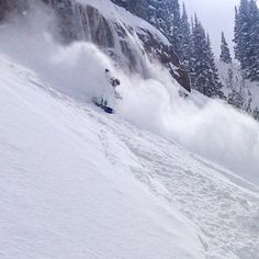 Outriding the whitewash. #shred #utah #powder #ski #snowboard