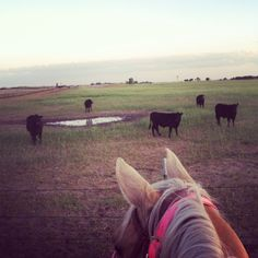 My favorite view <3