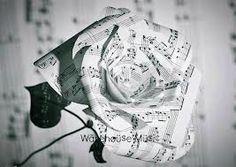 roses, notes... quina diferència hi ha si totes són igual de boniques?