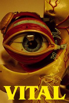 Vital (2004) - Shinya Tsukamoto